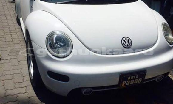 Buy Used Volkswagen Beetle White Car in Muli in Miim