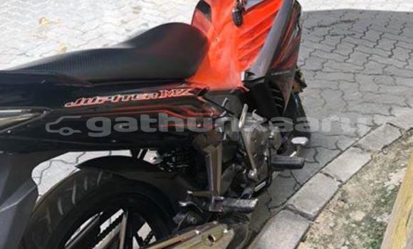 Buy Used Yamaha FZR Other Bike in Agolhitheemu in Raa